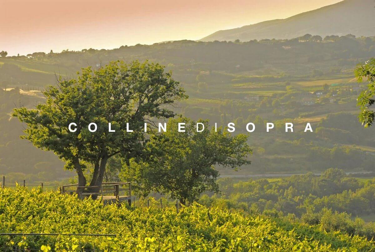 ToscanArt Magazine Colline di Sopra 1 size=800
