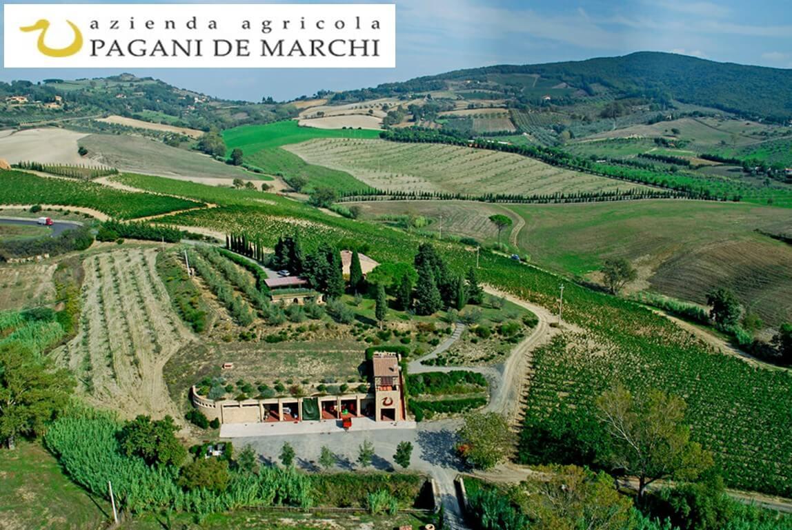 ToscanArt Magazine Vista di Fronte Azienda Pagani de Marchi size=1148x398